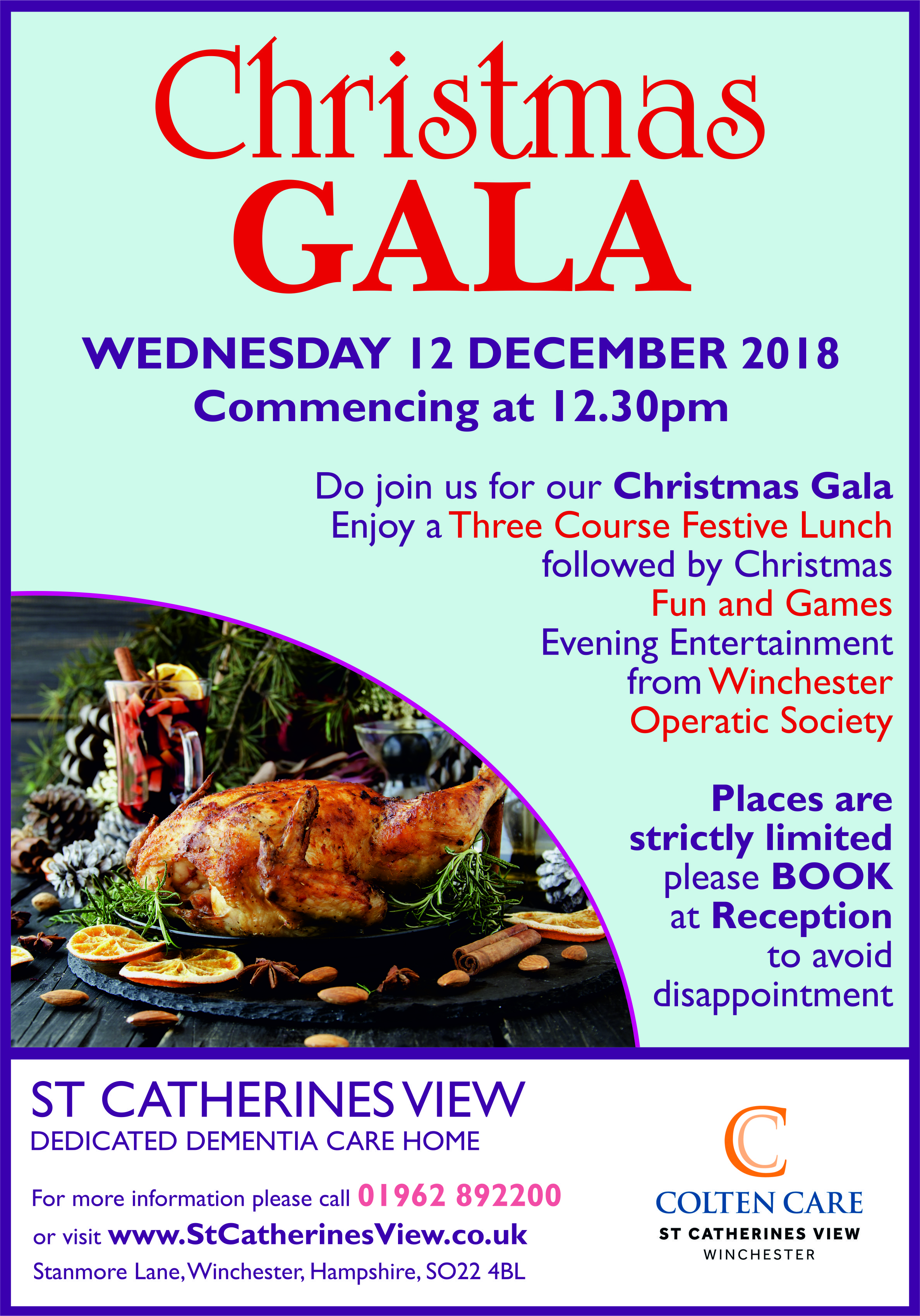 St Catherines View - Christmas Gala Poster 12 Dec - 20 Nov 2018