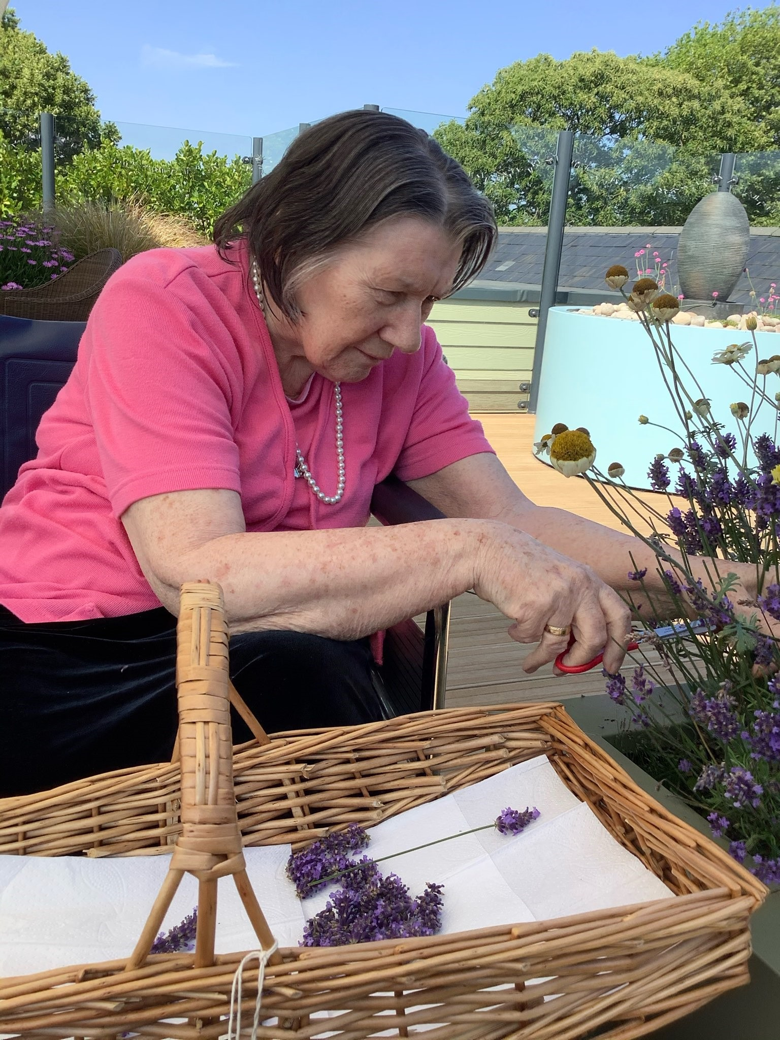 Vicky Cutting Lavender (002)